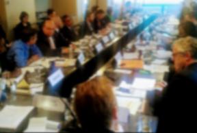 UCLG Champion Vrbanovic joins 13th SC meeting of GPEDC