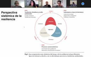 Participantes de zoom observan una pantalla compartida donde se observa la perspectiva sistémica de la resiliencia