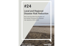 Local and Regional Disaster Risk Reduction