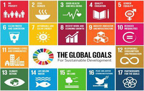 Cities are leading by example in the implementation of the Sustainable Development Goals