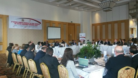 9th Steering committee of the Global Partnership on Effective Development Cooperation (GPEDC)