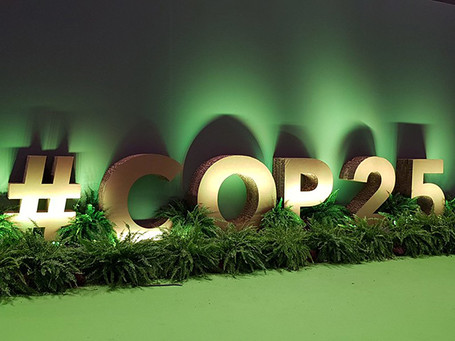 Mayors call for local involvement in national action plans at COP25