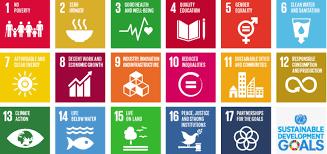 SDG Moment 2020