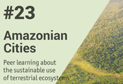 A new Peer Learning Note about the Amazon region is now online!